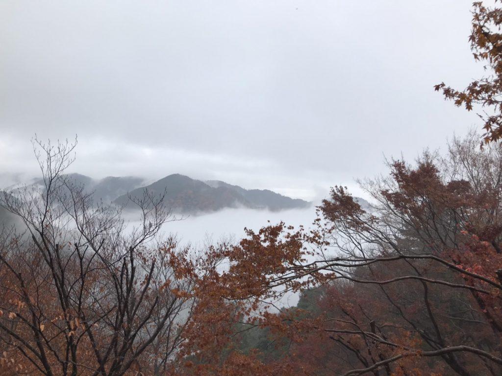 高 尾山 天気